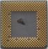 AMD AHM1200AVS3B B